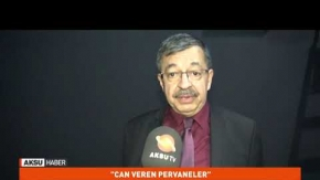 Can Veren Pervaneler.